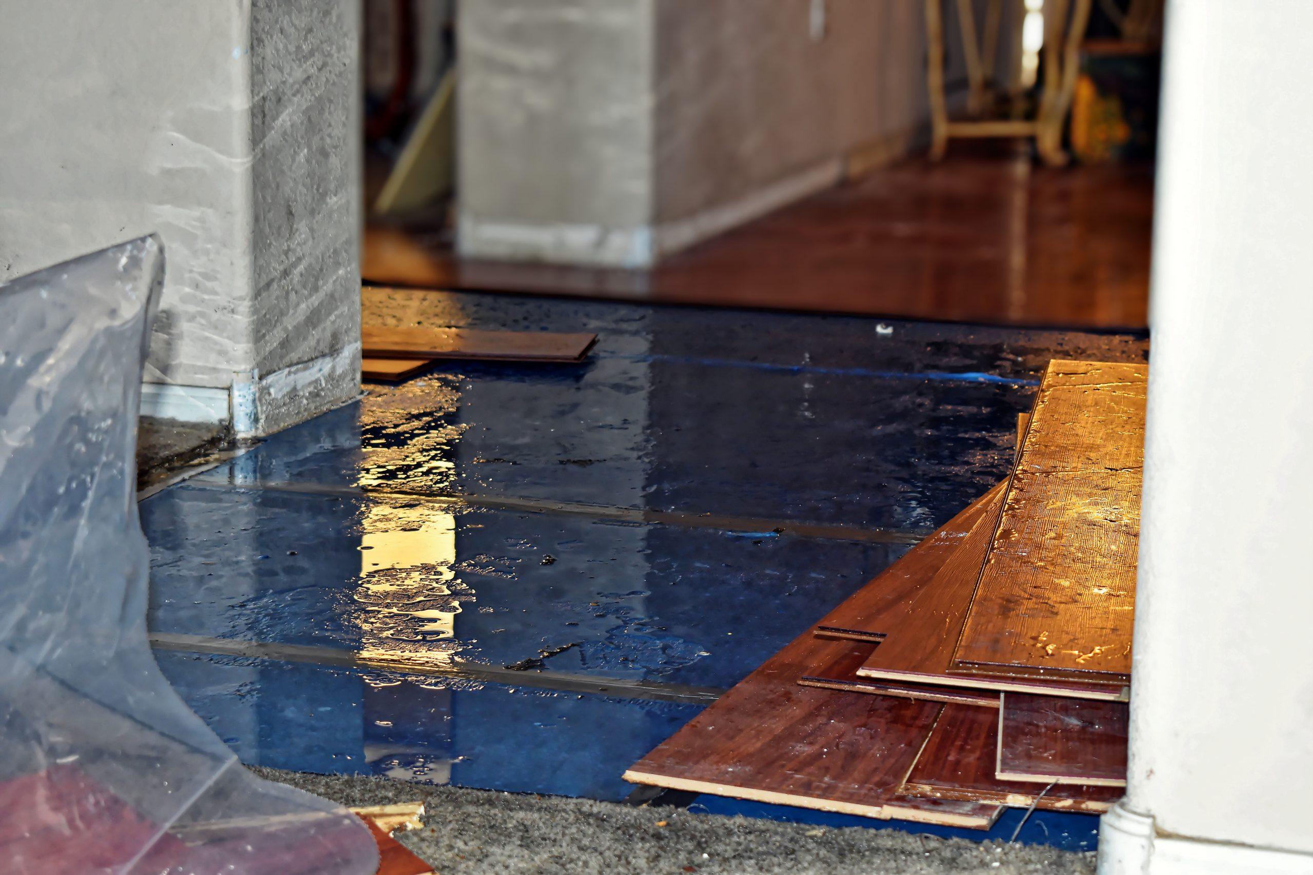 Water Damage Greenville Restoration Specialists
