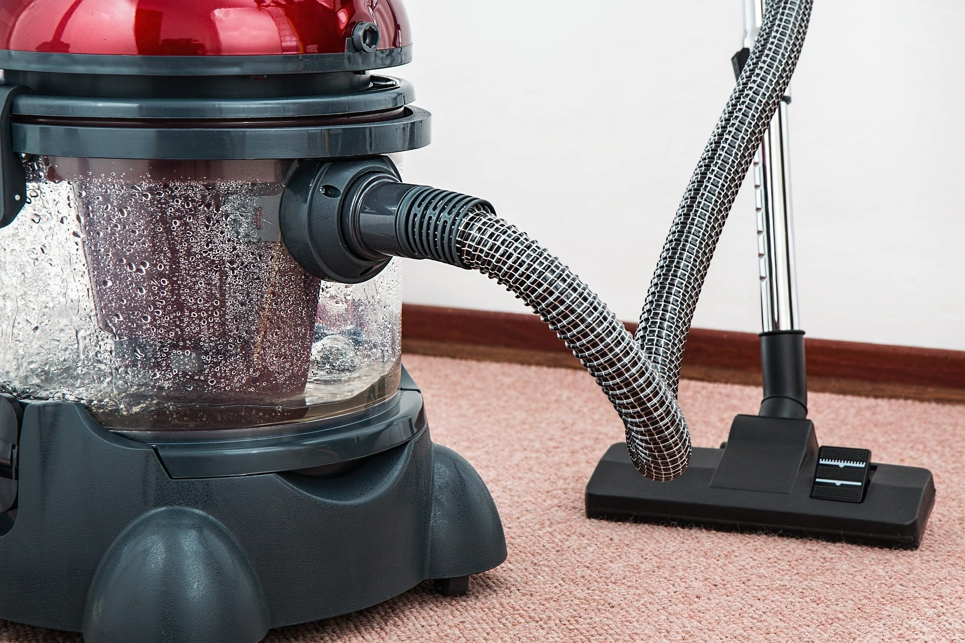 Mold Removal Greenville Restoration Specialists